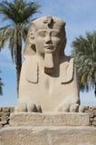Sfinx bij tempel Luxor Stock Foto