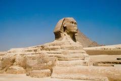 Sfinx egípcio em Gizet Foto de Stock