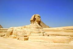 Sfinx Egypte Royalty-vrije Stock Foto's