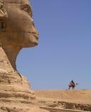 Sfinx en kameel Royalty-vrije Stock Afbeelding