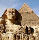 Sfinx in Giza Royalty-vrije Stock Afbeelding
