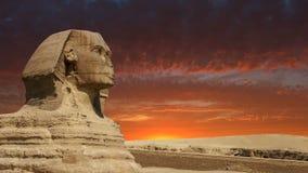Sfinx, Giza, de Reis van Kaïro Egypte, Zonsopgang, Zonsondergang stock footage