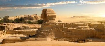 Sfinx i öken Arkivfoton