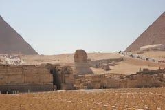 Sfinx nära pyramiden Arkivfoton