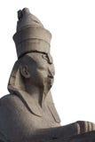 Sfinx på vit Royaltyfria Bilder