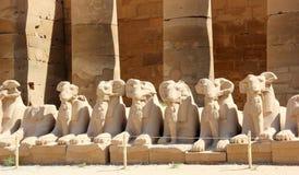Sfinxen bij de Tempel Karnak. Stock Foto