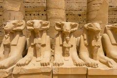 Sfinxenweg bij de Karnak-Tempel Complex in Luxor, Egypte stock foto's