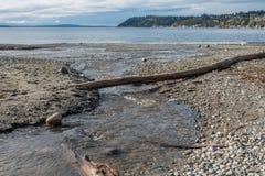 Sfociare in Puget Sound Immagine Stock Libera da Diritti