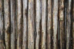 Sfond di legno di struttura Immagini Stock