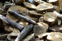 Sfondo naturale con i dadi di legno Fotografia Stock