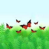 Sfondo naturale con le farfalle Immagine Stock Libera da Diritti