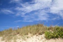 Sfondo naturale delle dune Fotografia Stock