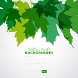 Sfondo naturale Fondo di vettore con verde Fotografia Stock