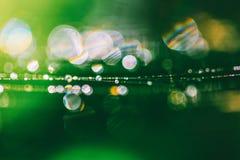 Sfondo naturale verde con la molla del bokeh o mattina di estate con rugiada sulla ragnatela fotografia stock libera da diritti