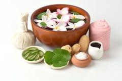 Sfreghi la stazione termale con l'aloe vera, Pennywort asiatico, Tiger Herbal e miele della miscela del sale immagini stock libere da diritti