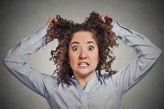 Sfrustowany szokujący biznesowej kobiety ciągnięcia włosy out wrzeszczy obraz royalty free