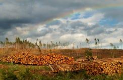 Sfruttamento della terra di madre Fotografia Stock Libera da Diritti