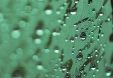 Sfuocatura delle gocce di acqua naturali sul tono verde fotografia stock libera da diritti