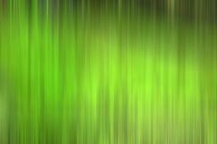 Sfuocatura verde astratta Fotografie Stock Libere da Diritti