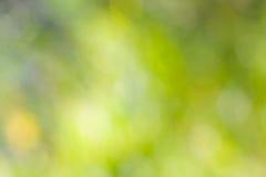 Sfuocatura verde astratta