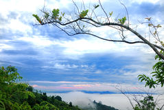 Sg. Lembing Hügel Kuantan Lizenzfreies Stockfoto