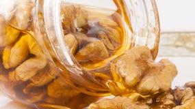 Sgocciolatura del miele e della noce dal barattolo Immagini Stock Libere da Diritti