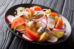 Sgombro affumicato con i clo delle patate, dei ravanelli, delle cipolle e dei pomodori fotografie stock