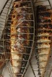 Sgombro arrostente col barbecue sull'immagine del primo piano del fuoco del carbone Fotografia Stock Libera da Diritti