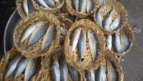 Sgombro del mare del Vietnam Fotografia Stock