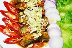 Sgombro e peperoncino rosso dell'insalata immagini stock