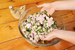 Sgombro marinato Fotografia Stock