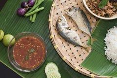 Sgombro tailandese del peperoncino rosso dell'alimento Fotografie Stock Libere da Diritti