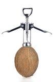 Sgranatura della noce di cocco con l'apri del vino su bianco Fotografia Stock