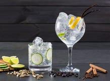 Sgrani il cocktail tonico con il cardamomo di Lima dei chiodi di garofano della vaniglia del cetriolo fotografie stock