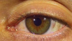 Sguardi e lampeggi dell'occhio umano stock footage