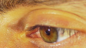 Sguardi e lampeggi dell'occhio umano archivi video