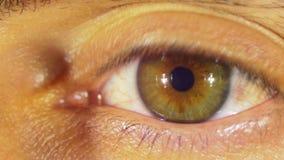 Sguardi e lampeggi dell'occhio umano video d archivio