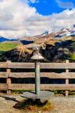 Sguardo in avanti Facendo un'escursione nelle alpi austriache Montagna delle alpi Vista di estate l'austria Immagine Stock