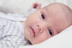 Sguardo calmo del neonato, occhi scuri, primo piano del fronte Immagini Stock Libere da Diritti