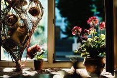 Sguardo di natura morta dei fiori e dei brunch fotografia stock libera da diritti