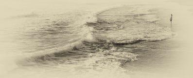 Sguardo fuori al mare Immagini Stock Libere da Diritti