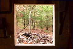 Sguardo fuori della finestra Fotografia Stock