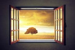 Sguardo fuori della finestra immagini stock