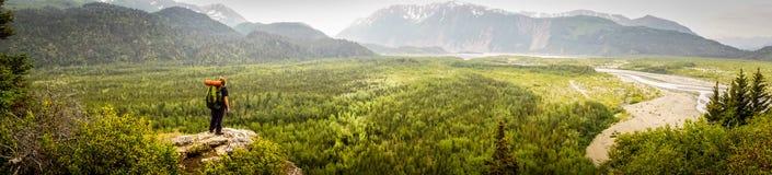 Sguardo fuori nella regione selvaggia d'Alasca vasta Fotografia Stock Libera da Diritti