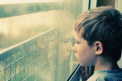 Sguardo sveglio attraverso la finestra Fotografie Stock