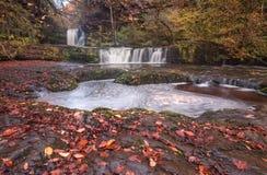 Sgwd Ddwli Isaf waterfalls South Wales. Autumn leaves at Sgwd Ddwli Isaf waterfalls on the river Neath, near Pontneddfechan in South Wales, UK Stock Images