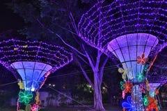 Sha Tin Festive Lighting 2016 immagine stock