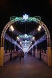 Sha Tin Festive Lighting 2016 image stock