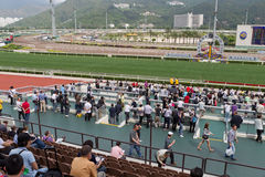 Sha Tin Racecourse : Queen Elizabeth II Cup Royalty Free Stock Photos
