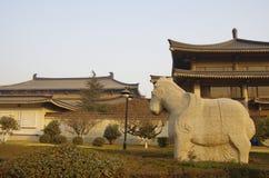 Shaanxi historiemuseum Royaltyfri Bild